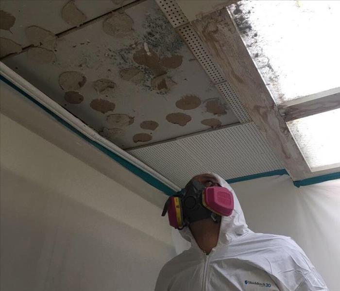 Servpro technician suited in ppe inspecting a ceiling with mold.