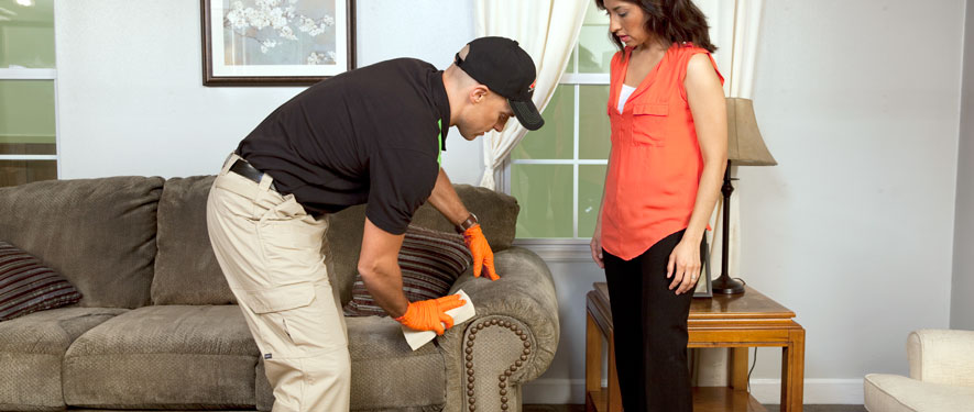 Vernon, CA carpet upholstery cleaning